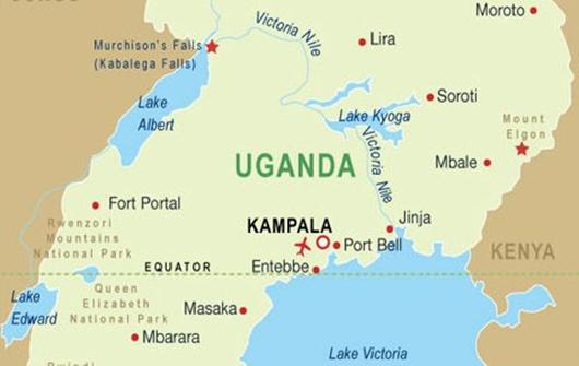 Uganda anti-gay law declared 'null and void' by constitutional court