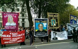 Hundreds join rally over deaths in police custody