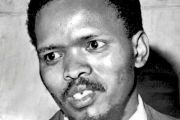 Calls for govt to reopen Steve Biko inquest